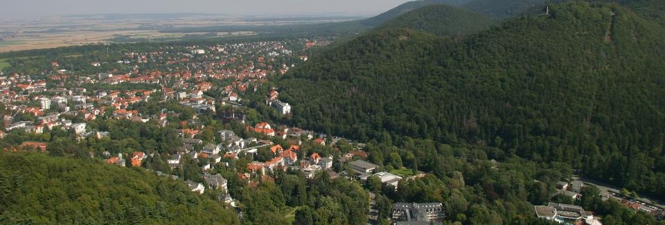 Luftbild Bad Harzburg